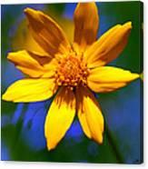 Wildly Yellow Canvas Print