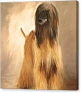 Willem Van Oranje Canvas Print