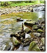 Williams River Headwaters Zen Rocks Canvas Print