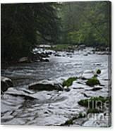 Williams River Rain Downpour Canvas Print