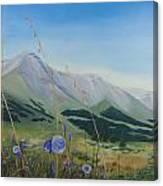Willmore Wilderness Canvas Print