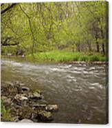 Willow River 3 Canvas Print