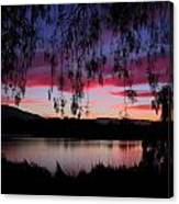 Willow Silhouette Canvas Print