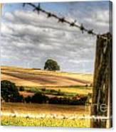 Wiltshire Canvas Print