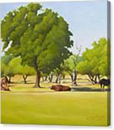 Wimberley Pastoral Canvas Print