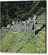 Winay Wayna Inca Trail Peru Canvas Print