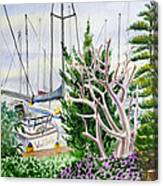Wind Drifter  Canvas Print
