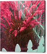 Wind In The Grass - Red Canvas Print