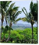 Wind Over Kalaheo Canvas Print