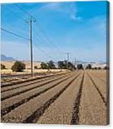 Wind Rows Farm Canvas Print