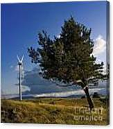 Wind Turbine And Tree On The Plateau Of  Cezallier. Auvergne. France. Canvas Print