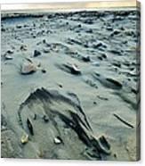 Windblown Beach Canvas Print