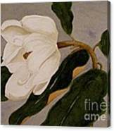 Windblown Magnolia Canvas Print