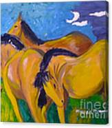 Winding Down Canvas Print
