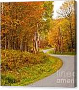 Winding Fall Road Canvas Print