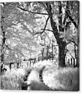 Winding Journey Through The Blue Ridge Canvas Print