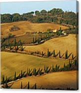Winding Road And Cypress Trees In Tuscany 1 Canvas Print