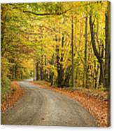Winding Rural Road With Fall Colors Canvas Print