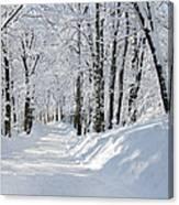 Winding Snowy Road In Winter Canvas Print