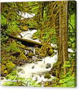 Winding Through The Forest Canvas Print