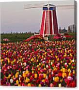 Windmill Of Flowers Canvas Print