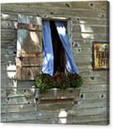 Window And Flowerbox Canvas Print