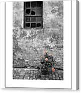 Window And Flowers Poster Canvas Print