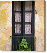 Window And Wall Colonial Style Canvas Print