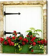 Window Box 2 Canvas Print