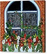 Window Flower Box On A Stucco Wall Canvas Print
