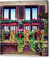 Window Flower Canvas Print