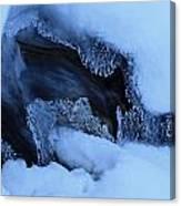 Window On Tangle Falls Canvas Print