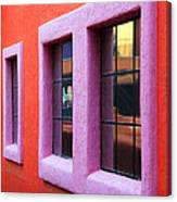 Window Reflections 2 Canvas Print