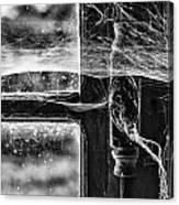Window Spiders Web Canvas Print