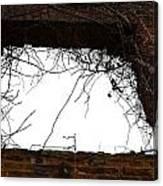 Window Through Time Canvas Print