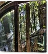 Window To A Window Via Tree Canvas Print