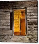 Window To The Soul II  Canvas Print
