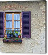Window With Potted Plants Of Rural Tuscany Canvas Print