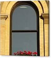 Windowsill Gerraniums Canvas Print