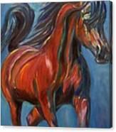 Windstalker Canvas Print