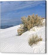 Windswept - White Sands National Monument Canvas Print