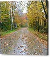 Windy And Rainy Fall Day Canvas Print