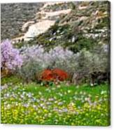 Windy Spring Day Canvas Print