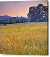 Windy Sunset At The Medieval Castle Canvas Print