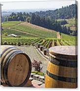 Wine Barrels In Vineyard Canvas Print