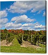 Wine In Waiting Canvas Print
