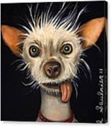 Winner Of The Ugly Dog Contest 2011 Canvas Print