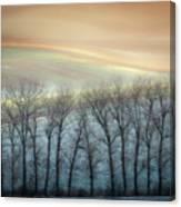 Winter Alley Canvas Print
