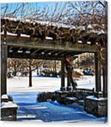 Winter Arbor Canvas Print
