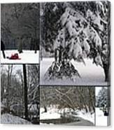 Winter At Petrifying Springs Park Canvas Print